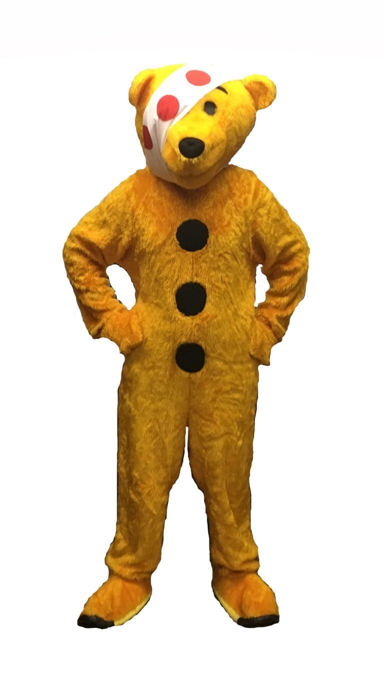 Charity Bear Costumes
