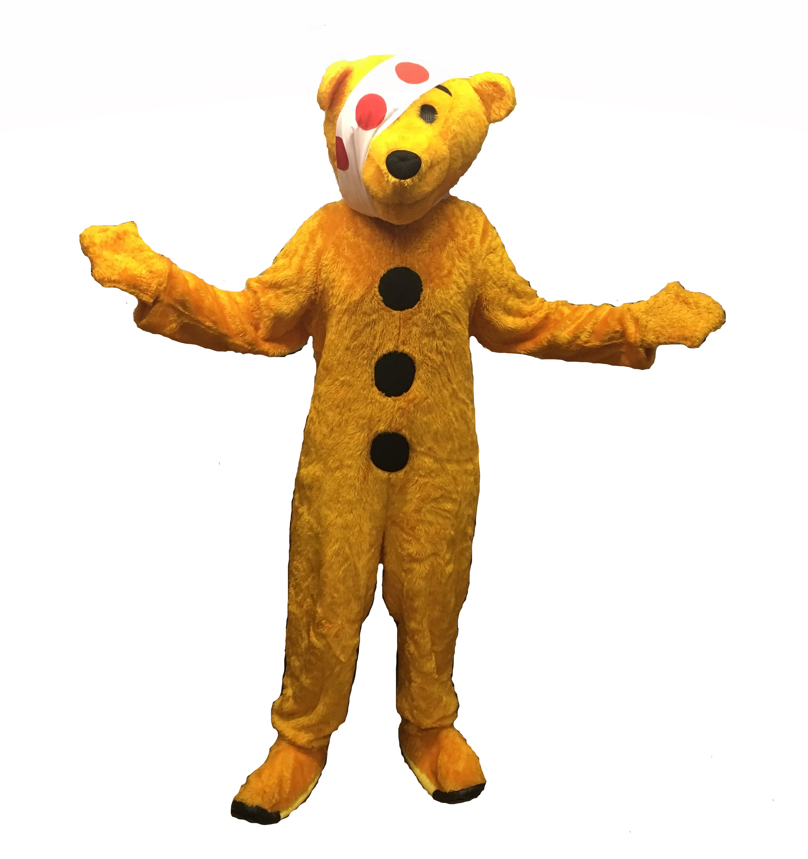pudsey bear costume hire