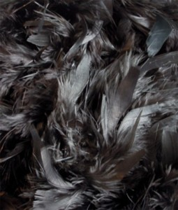 Black-Feather-Boa-(2meters)