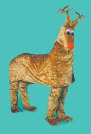 Rudolph Reindeer Costume 2 person Reindeer Fancy Dress