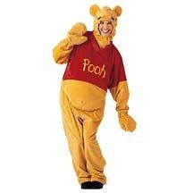 Disney-Winnie-the-Pooh-Costume