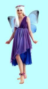 Titania-Fairy-Fancy-Dress-Costume