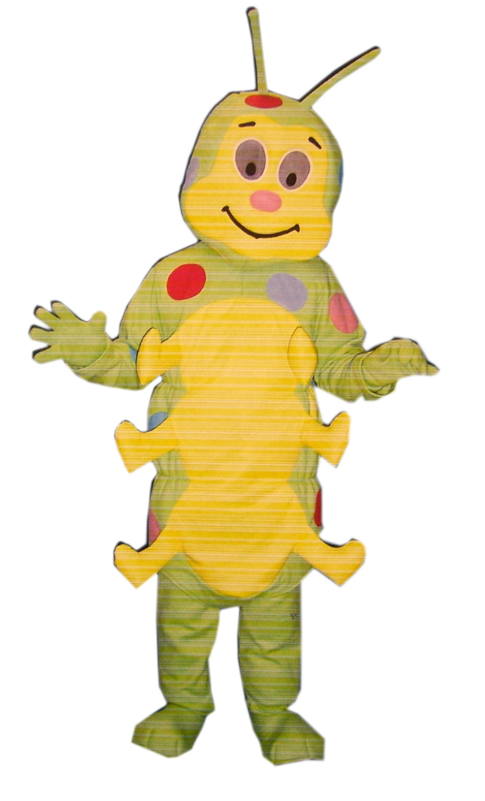 Caterpillar-costume