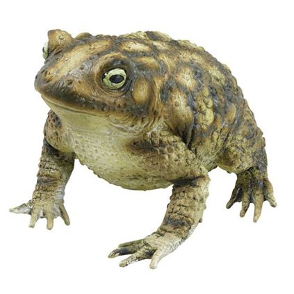 Large Toad Rubber 18cm Halloween Prop