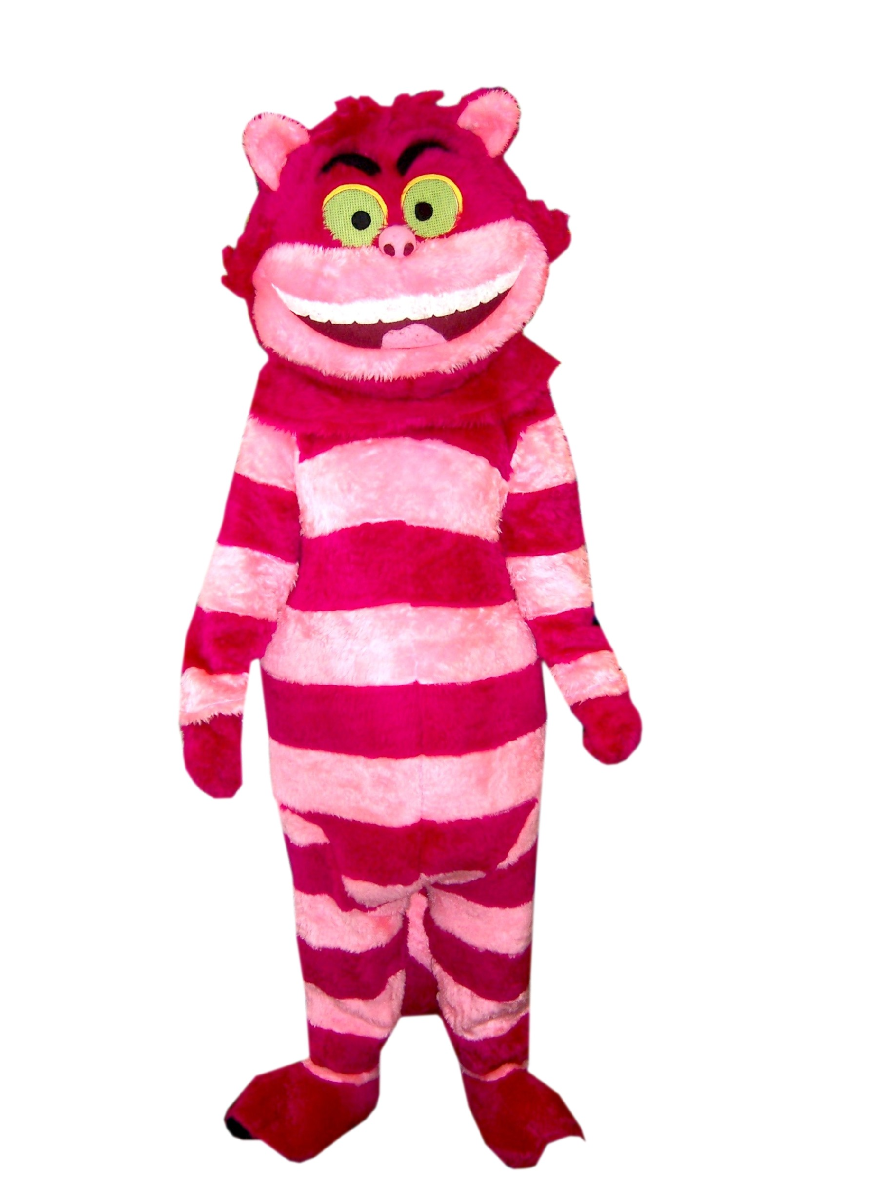 Cheshire Cat Costume Kids Uk