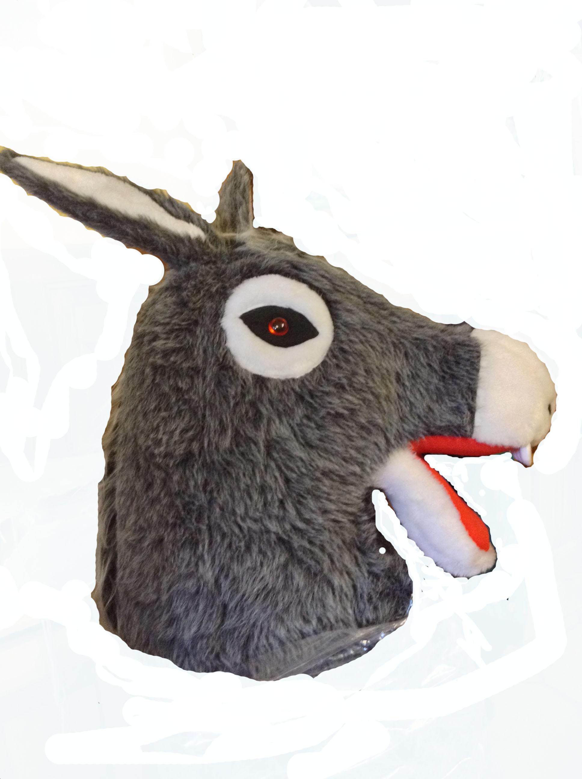 two_man_donkey_costume