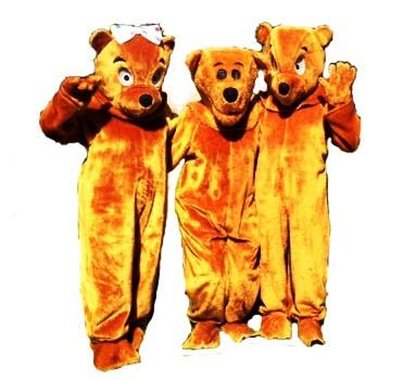 3_Bear_Costumes