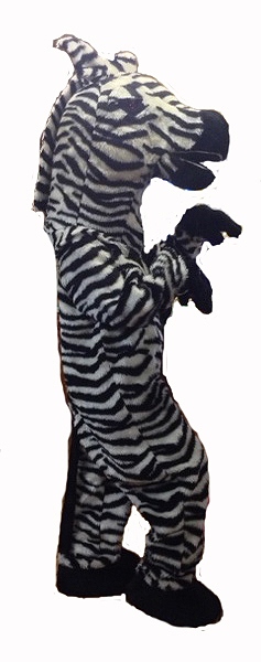 Zebra_fancy_dress