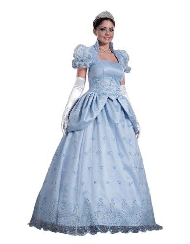 Adult Cinderella Costume