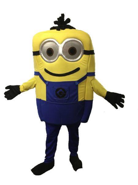 not minion fancy dress
