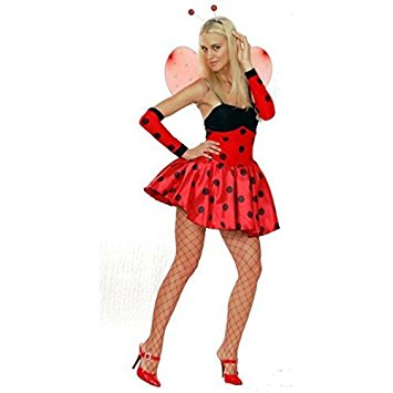 Sexy Spotty Ladybird Fancy Dress Costume with Wings