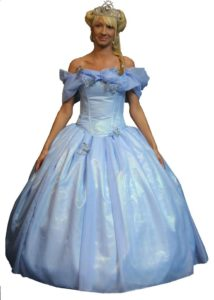 Blue Adult Cinderella Dress Princess Fancy Dress
