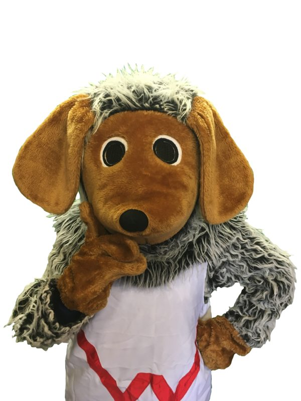 style of wombles costume