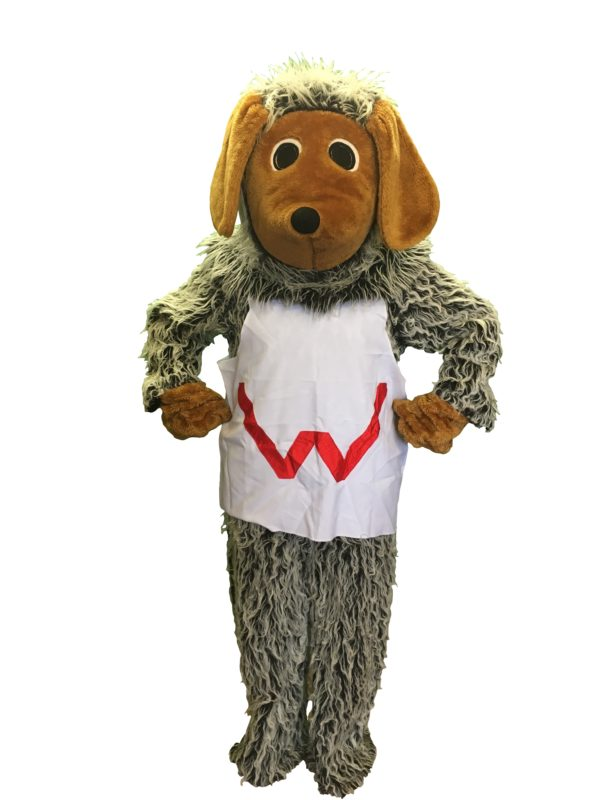 Tonsk Fancy Dress, Wimbledon Litter Collector Costume