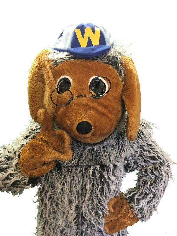 Wellington womble costume
