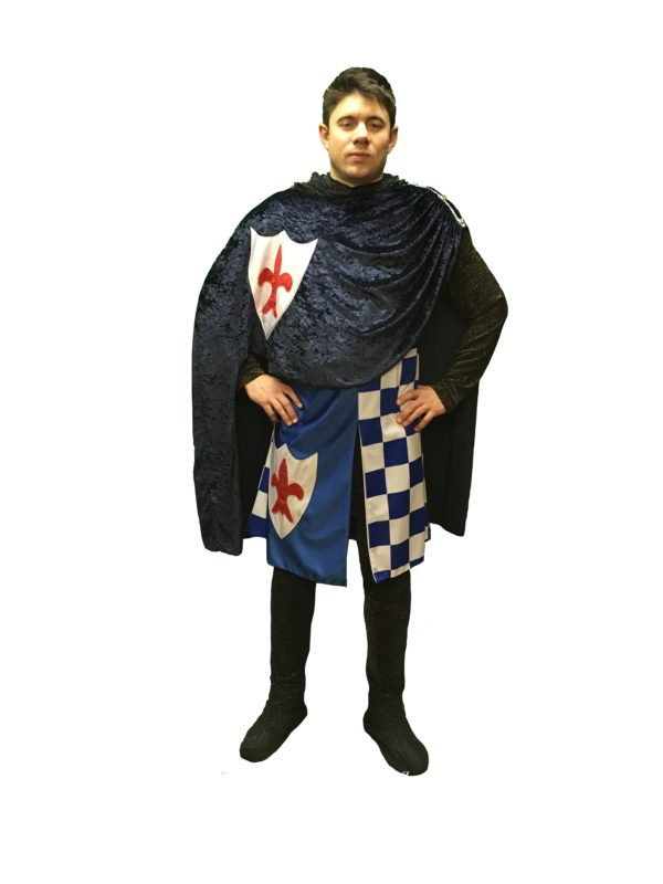 Blue Check knight costume