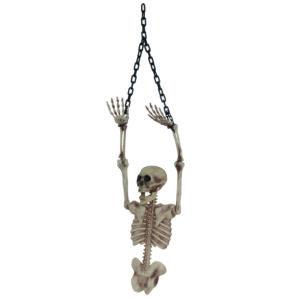 Skeleton Half Torso Halloween Prop