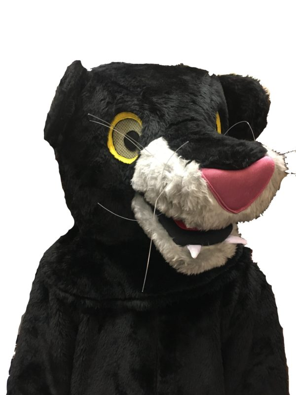 Black Panther Costume, Bagheera Outfit, Jungle Book Fancy Dress